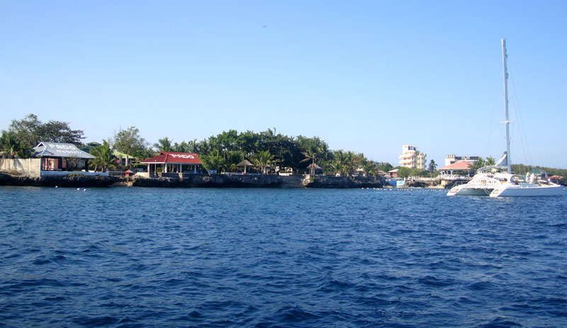 cebu diving - pado diving