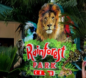 Cebu Rain Forest Park - Rainforest Park Cebu