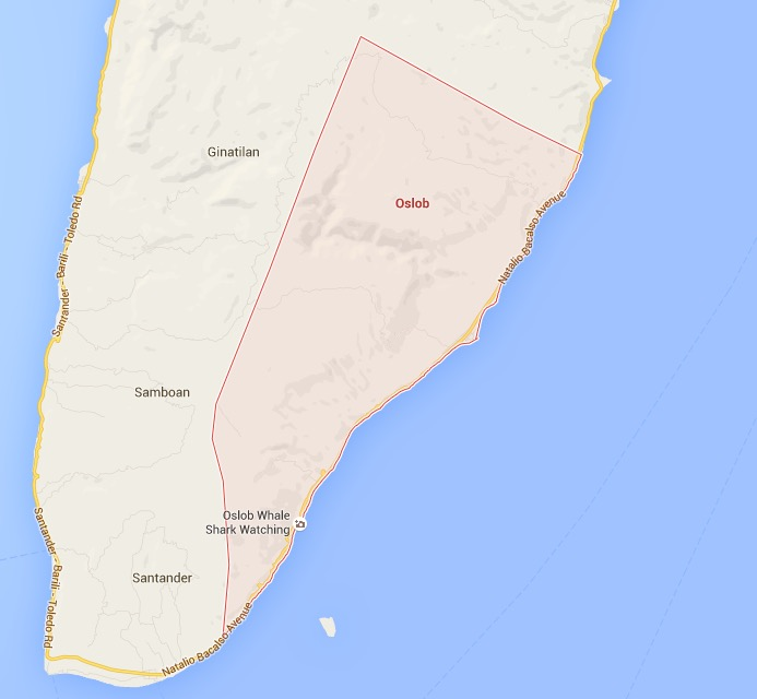 how to get to oslob from cebu city