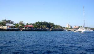 cebu diving - pado diving