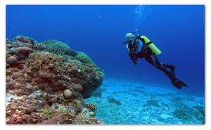 Kansantik Diving Island