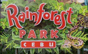 Cebu Rainforest