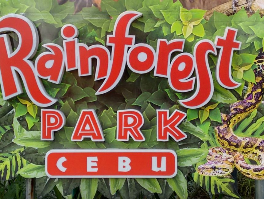 Cebu Rainforest