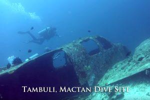 Tambuli Mactan Dive Site
