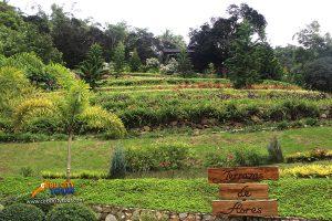 Cebu Terrazas De Flores Busay