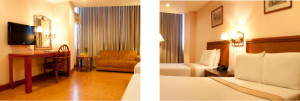Rajah Park Hotel Executive