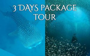 Cebu 3 Days Package Tour